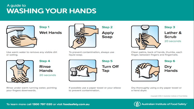photo about Free Printable Hand Washing Posters titled A Lead in the direction of Washing your Arms
